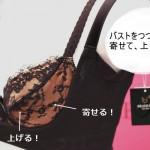 今あるブラを3000円で補正ブラに変える「バストリフター」を見てきたよ