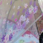 ディズニーデザインならビニール傘もここまでかわいくなる!ドーム型で濡れにくいのもうれしい